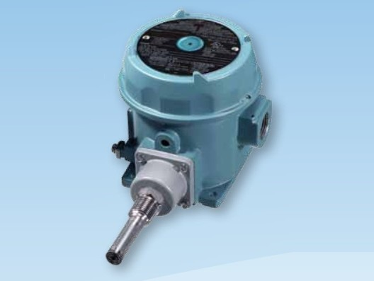 Electromechanical Double Pole Switch